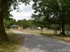 2012-08-05b-114-copy